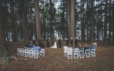 """Our ceremony from start to finish was perfect!"""