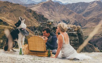 Our Favourite YBD Wedding Dogs